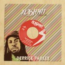 Derrick Parker - Dead Sound - Flash Hit 7