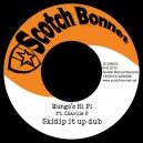 Mungo's Hi Fi ft. Charlie P - Skidip it up dub WAV